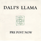 Dali's Llama - Pre Post Now