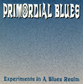 Experiments In A Blues Realm CD Cover 16KB